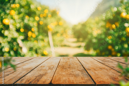 Obraz Empty wood table with free space over orange trees, orange field background. For product display montage - fototapety do salonu