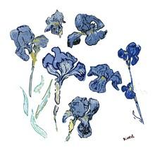 Irises Flowers. Vector Illustr...