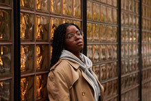 Pretty African American Female With Braids In Casual Outfit Looking At Camera While Leaning On Ornamental Glass Wall