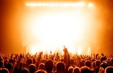 Crowd Enjoying At Concert