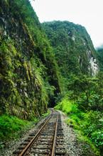 Railway Through The Forest, Ag...