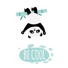 Be Cool - Cute Cartoon Panda Hanging Upside Down From Bamboo Branch