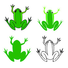 Green Frog Illustrations, Isolated. Vector Graphics.