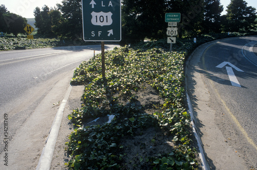 Photo A 101 Freeway sign in California