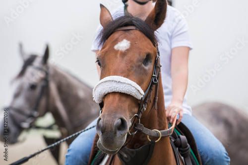 Exercise at Horse Racing Track Upstate New York Adirondacks Saratoga Race Course