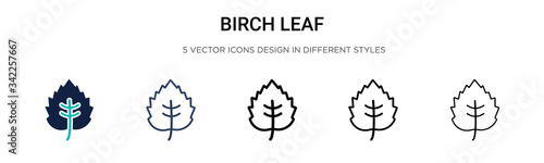 Fotografija Birch leaf icon in filled, thin line, outline and stroke style