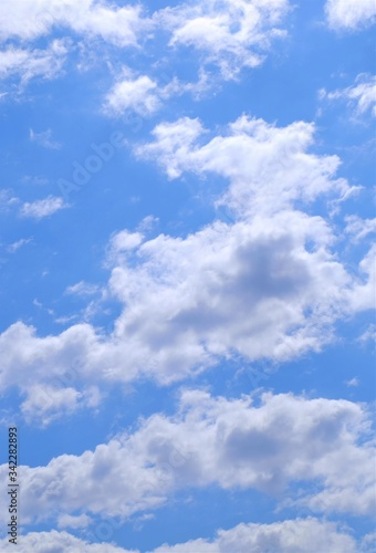 初夏の青空 高積雲 Canvas Print