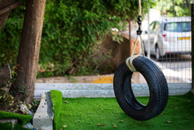 Tire Swing On The Grass