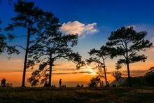 Silhouette Trees On Field Agai...
