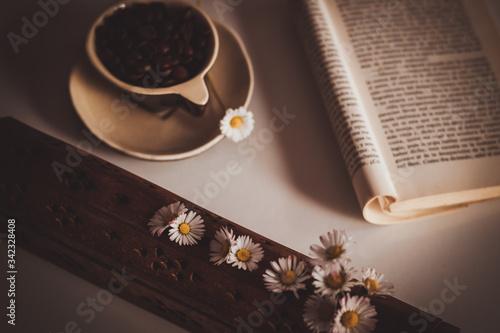 Fototapeta Café y libros