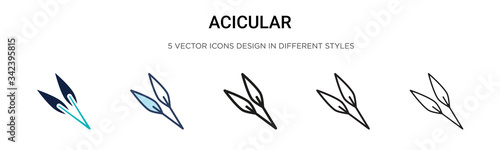 Photo Acicular icon in filled, thin line, outline and stroke style