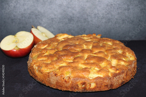 fragrant Apple pie fresh, fragrant, airy, soft delicious homemade pie Canvas Print