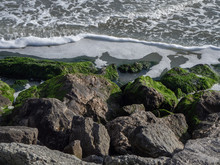 Seashore With Rocks Covered By...