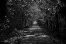 Natural Nature Tunnel In Black...