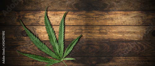 Photo Cannabis Sativa Leaves On Wooden Table - Medical Legal Marijuana