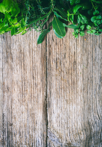 Fotografie, Obraz Fresh herbs border at the top of on an old wood background.