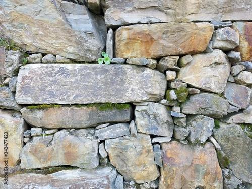 Stone Wall Douro 2