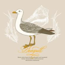 Retro Style Hand-drawn Seagull...