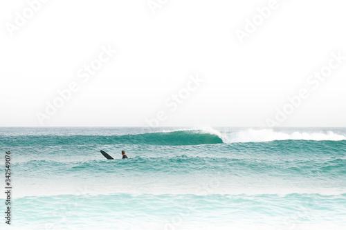 Adesivo per Auto Motivo Danger Shark Stile Surf. Moto o Parete