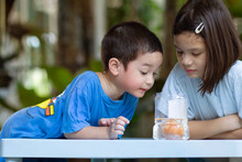 Egg In Vinegar Experiment Science Activity. Asian Preschool Kids Learn About A Cool Chemical Reaction, The Vinegar Reacting With The Calcium Carbonate In Eggshell. Fun Science And Simple Activities.