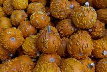 Warty Pumpkins For Sale In Market,, Background Or Backdrop, Food, Harvest Theme
