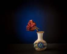 Dried Rose Against Blue In Cer...