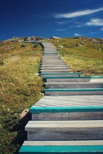 Empty Wooden Steps On Hill