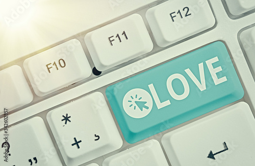 Word writing text Love Canvas Print