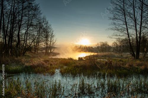 Fototapeta Wschód słońca nad rozlewiskiem. Rzeka Pilica. obraz