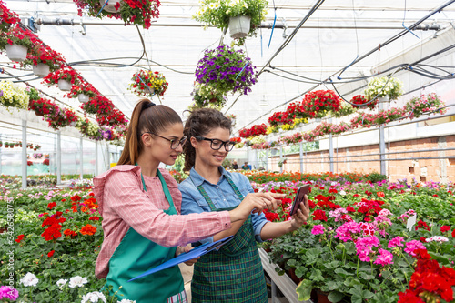 Two woman work in modern nursery plant store with notebook