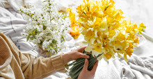 A Young Woman Holds A Bouquet Of Daffodils.