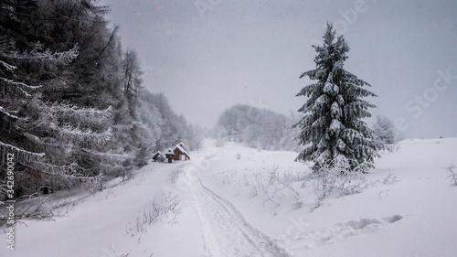 Photo Zimowa aura w górach Bieszczadach