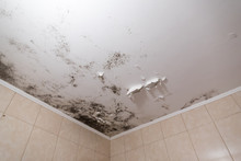 Black Mold And Mildew Spots On The Ceiling Or Wall Due To Poor Air Ventilation And High Humidity. Harm To Health.