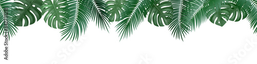 Naklejki rośliny  vector-decorative-seamless-pattern-with-realistic-palm-and-monstera-leaves-on-white-backgr