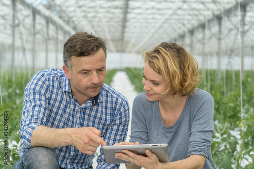 Photo Young couple agronomist analyzes greenhouse performance with tablet