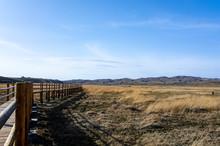 Wooden Bridge Over The Grassland And Wetland