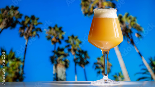 Photo A hazy India pale ale craft beer in a Teku Glass with tropical palm trees and blue sky