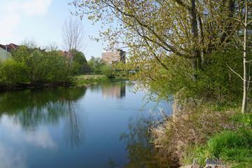 Fototapeta na wymiar Der Fluss die Leine in Alfeld in Niedersachsen