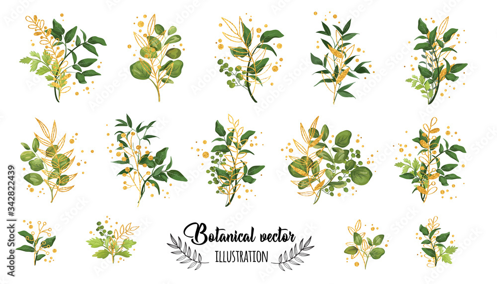 Fototapeta Collection romantic gold and green watercolor leaves. Elegant plants for design, brand name, wedding invitation thanks card on white background.