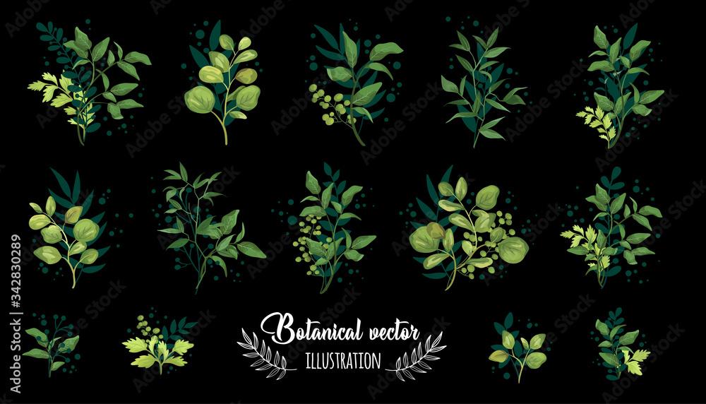 Fototapeta Collection romantic green watercolor leaves. Elegant plants for design, brand name, wedding invitation thanks card on black background