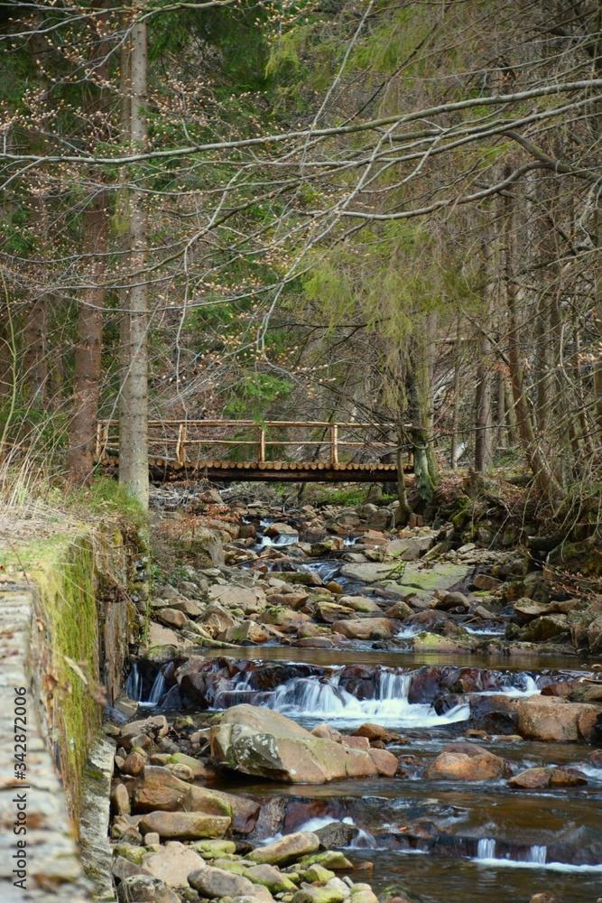 Fototapeta tajemniczy mostek nad potokiem
