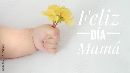 Cuadros en Lienzo Feliz día de las madres