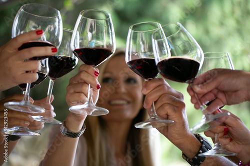 Leinwand Poster Brindisi tra amici con calici di vino rosso nella natura in campagna