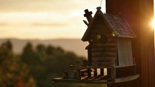 Close-up Of Birdhouse On Wooden Pole