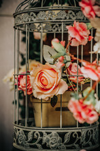 Vintage Cage With Flowers