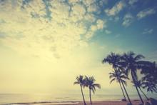 Seascape Photo Of Vintage Post...