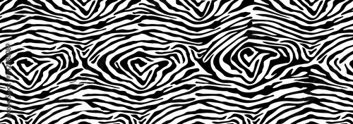 Fotografija Trendy zebra skin pattern background vector