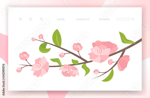 Obraz pink sakura flowers with leaves on blooming branch spring botanical greeting card copy space horizontal vector illustration - fototapety do salonu
