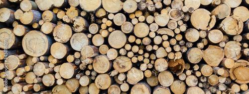 Stampa su Tela round teak wood stump background