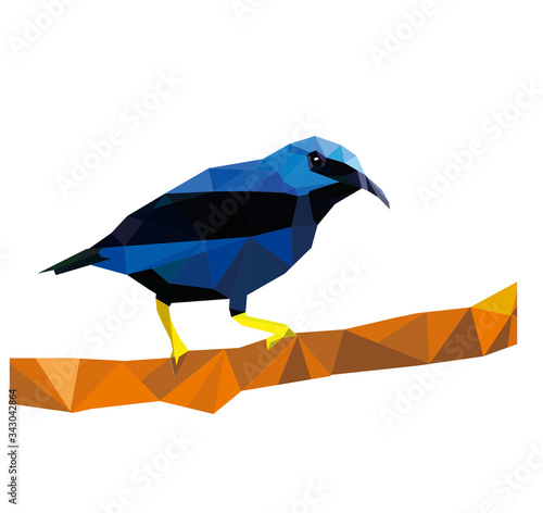 Photo polygon blue bird with